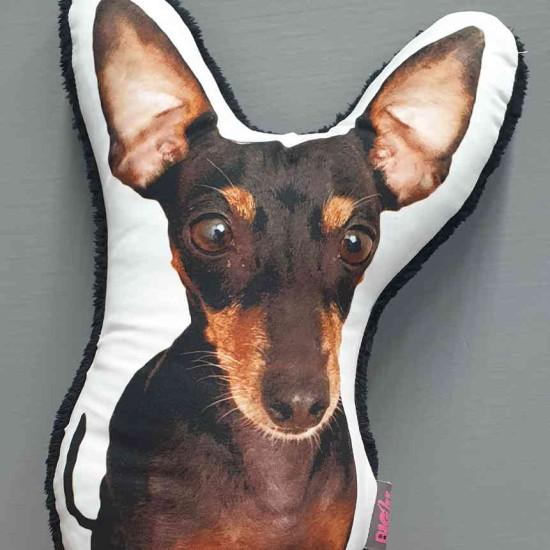 Biglee ''Kedvencem'' Form Pillow